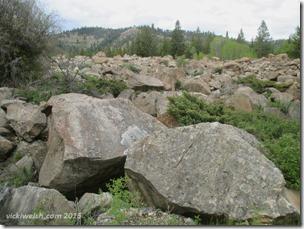 June 5 rocks IMG_4915