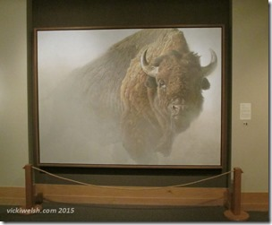 June 6 13 art bison