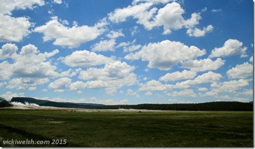 June 8 13 Lower Geyser Basin