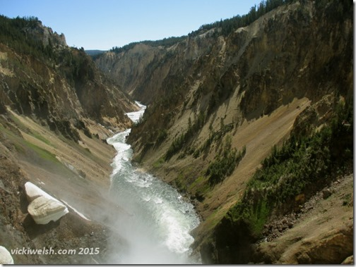 June 9 2 yellowstone falls 1