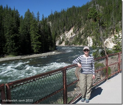 June 9 4 yellowstone falls 3