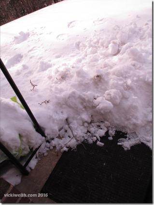 Jan 25 snow dye 6
